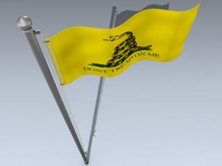 Flag (Dont Tread)