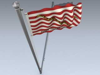 Flag (First Navy Jack)