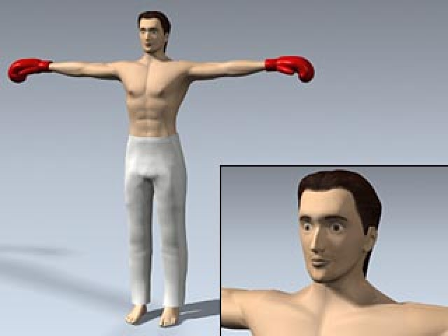 Male Kickboxer