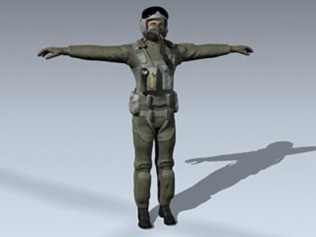 Male USAF Pilot (Jointed)