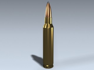 Remington .223 Cartridge